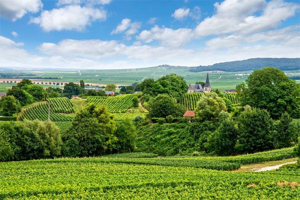 Champagne Ardennen